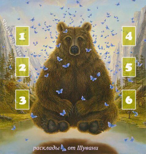 "Расклад ""День Медведя"" 0691900"